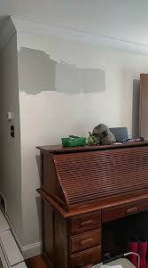 which gray wall color for small south facing living room