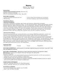 resume format information technology technology resume sles information information technology