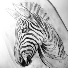 25 trending zebra tattoos ideas on pinterest zebra drawing