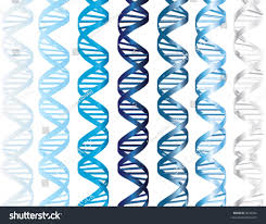 Blue Shades Vector Dna Double Helix Several Shades Stock Vector 9642940