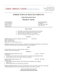 download resume sample work experience haadyaooverbayresort com