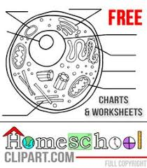 free science charts u0026 worksheets science for secondary grades