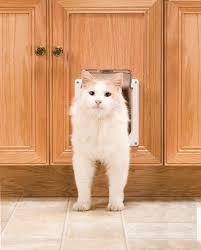 petsafe interior 2 way locking cat door white ekdoni