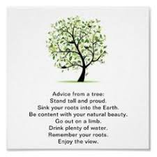 be like a tree quote quotes tree quotes