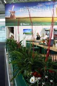 66 best rent a plant pflanzen zum mieten flower decoration for