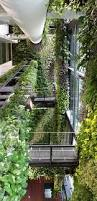 exclusive how to design a vegetable garden 17 best ideas about