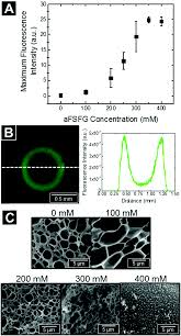 synthetic hydrogel mimics of the nuclear pore complex display
