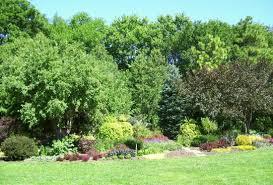 Rock Garden Mn Lyndale Park Peace Rock Garden Review Of Lyndale Park Peace