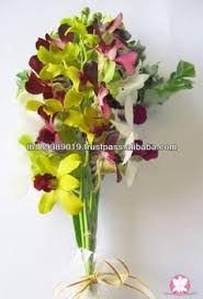 Orchid Bouquet Good Quality Natural Fresh Cut Orchid Flowers Bouquets Buy