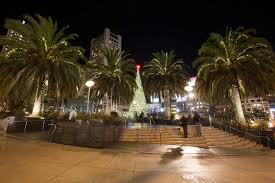 sf christmas tree lighting 2017 san francisco shines bright holiday lights sights and decorations