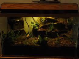 terrarium vivarium waterproof rock work for frogs and amphibians