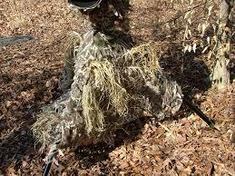 Color Blind Camouflage Test Carolina Wild Photo Equipment Notes