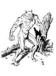 werewolf concept sketch the daring comic com
