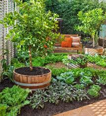 Edible Garden Ideas How To Make An Attractive Edible Garden Better Homes And Gardens