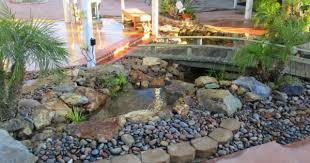 Backyard Pond Building San Diego Pond Builders Pacific Dreamscapes