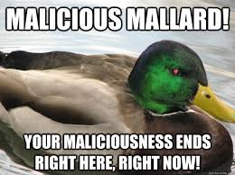 Advice Mallard Meme Generator - i m mad as hell and i can t take it anymore angry actual advice