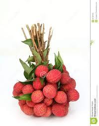 lychee fruit fresh of litchi fruit stock image image of health lechee 25784043