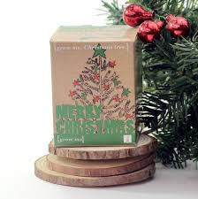 christmas tree in a box best 25 small christmas trees ideas on