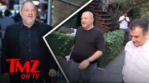 harvey weinstein fired tmz tv youtube