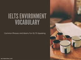 ielts environment vocabulary useful phrases u0026 expressions in