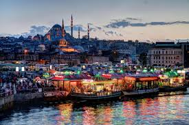online get cheap living turkey aliexpress com alibaba group