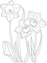 Easter Flower Coloring Pages - 279 best coloring pages images on pinterest coloring books