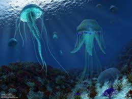 paleozoic earth a smack of jellyfish 1280x960