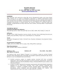 Php Programmer Resume Sample by Download Sql Developer Resume Haadyaooverbayresort Com
