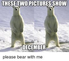 Hairless Bear Meme - these two pictures show december please bear with me bear meme