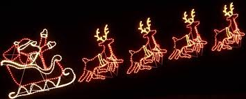 reindeer with lights lights card and decore