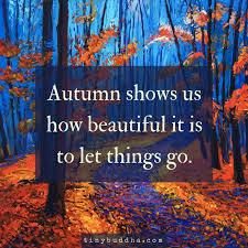 292 fall colors images autumn autumn fall