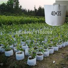 free shipping non woven planting bag home gardening vegetable grow