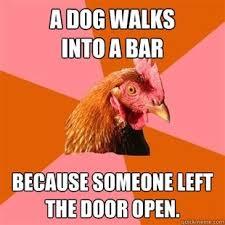 Rooster Jokes Meme - 47 best anti joke chicken images on pinterest funny stuff funny