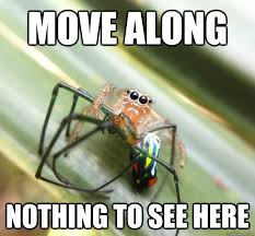 Funny Spider Meme - move along nothing to see here move along spider quickmeme