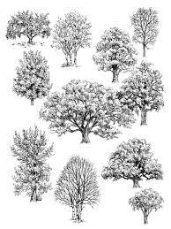 best 25 ink drawings ideas on pinterest pen drawings ink pen