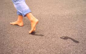 barefoot wikipedia