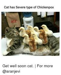 Get Well Soon Meme Funny - 25 best memes about get well soon cat get well soon cat memes