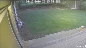 surveillance video shows cougar in gresham neighborhood kptv
