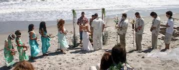 hawaiian themed wedding wedding suggestions a friend in the islands interesting