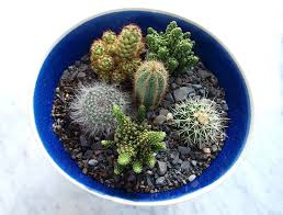using plants in interior design egon walesch interior design egon