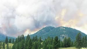 Wildfire Alerts Bc by Update Princeton Fire Holds At 1 500 Hectares Revelstoke Review