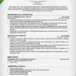 Inside Sales Resume Samples by Best Resume For Sales Representative Resume Templates For