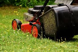 lawn fertilizers the best for spring and summer lawns for you