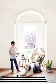 dulux white mist paint google search for the home pinterest