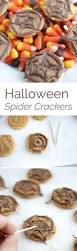 gourmet halloween chocolate 203 best images about halloween on pinterest