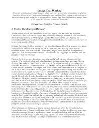 essay sample about myself writing service who write college essays educationusa best best ideas about cv english on pinterest cv design english cv writing service uk reviews