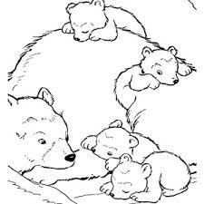 baby polar bear coloring pages lovely polar bear color page
