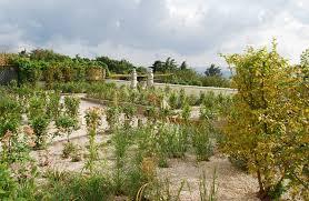 immagini di giardini fioriti giardini villa bonomo
