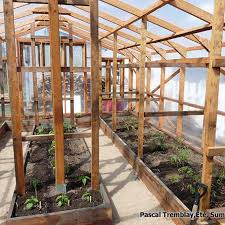 Shed Greenhouse Plans 277 Best Greenhouse Images On Pinterest Garden Sheds Greenhouse