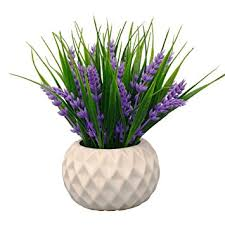 Lavender Home Decor Amazon Com Modern Artificial Potted Plant For Home Decor Lavender